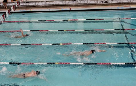 Mercer Island Boys Swim and Dive Finishes Season Undefeated